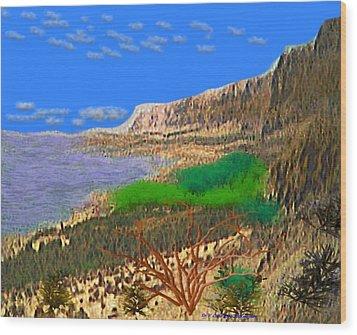 Wild Seashore Wood Print by Dr Loifer Vladimir