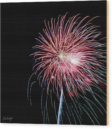 Wild Sky Flower Wood Print by Phill Doherty