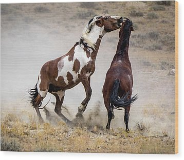 Wild Stallion Battle - Picasso And Dragon Wood Print by Nadja Rider