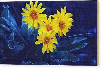 Wild Sunflowers Wood Print by Tiffany Vest