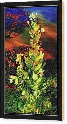 Wild Thai Lake Jasminum - Photo Painting Wood Print by Ian Gledhill