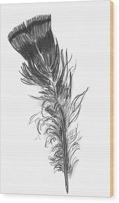 Wild Turkey Feather Wood Print by Kevin Callahan