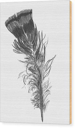 Wild Turkey Feather Wood Print
