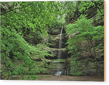 Wildcat Canyon Falls Wood Print