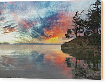 Wildcat Cove In Washington State At Sunset Wood Print by David Gn
