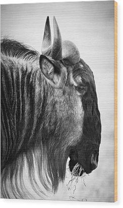Wildebeest Wood Print by Adam Romanowicz