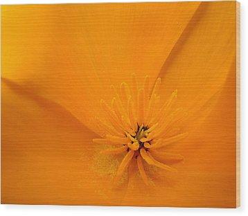Wildflower Art Poppy Flower 6 Poppies Artwork Prints Cards Wood Print by Baslee Troutman