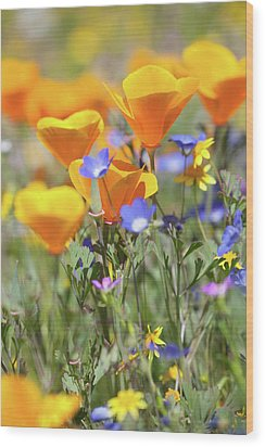 Wood Print featuring the photograph Wildflower Detail by Cliff Wassmann