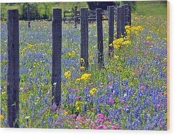 Wildflower Fenceline Wood Print