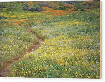 Wood Print featuring the photograph Wildflower Field Near Diamond Lake In California by Jetson Nguyen