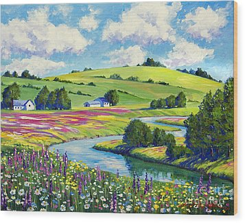 Wildflower Fields Wood Print by David Lloyd Glover