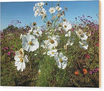Wildflower Mania Wood Print