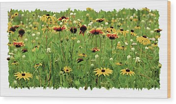 Wildflower Meadow Wood Print by JQ Licensing