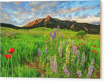 Wildflower Mix Wood Print by Scott Mahon