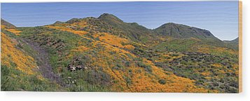 Wood Print featuring the photograph Wildflower Panoramic by Cliff Wassmann