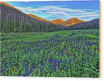 Wood Print featuring the photograph Wildflower Park by Scott Mahon