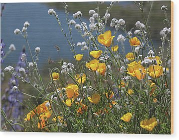 Wood Print featuring the photograph Wildflower Super Bloom At Diamond Valley Lake by Cliff Wassmann