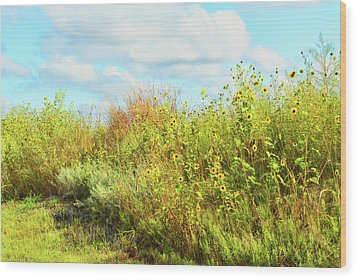 Wildflowers Along A Country Road  Photography  Wood Print by Ann Powell