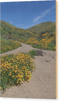 Wood Print featuring the photograph Wildflowers Along Walker Canyone by Cliff Wassmann