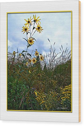 Wood Print featuring the photograph Wildflowers And Mentor Marsh by Joan  Minchak