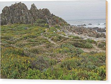 Wildflowers At China Rock - Pebble Beach - California Wood Print by Brendan Reals