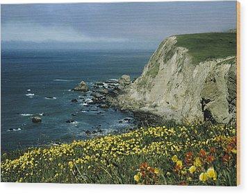 Wildflowers At Pt. Reyes Wood Print