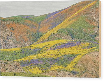 Wood Print featuring the photograph Wildflowers At The Summit by Marc Crumpler