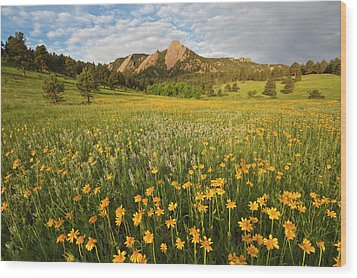 Wildflowers Wood Print by Lightvision