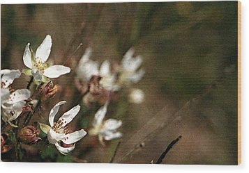 Wood Print featuring the photograph Wildflowers by Marna Edwards Flavell