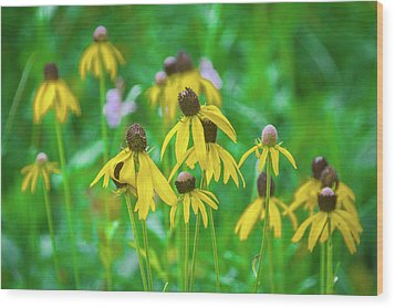 Wood Print featuring the photograph Wildflowers Of Yellow by Bill Pevlor