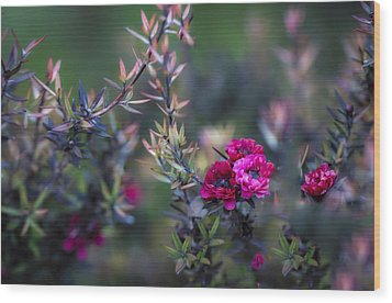 Wildflowers On A Cloudy Day Wood Print by Jade Moon