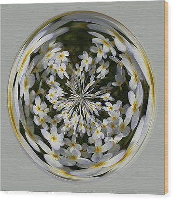 Wildflowers Orb Wood Print by Bill Barber