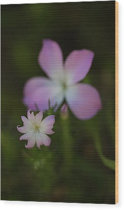 Wood Print featuring the photograph Wildflowers by Roger Mullenhour