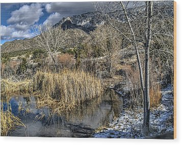 Wood Print featuring the photograph Wildlife Water Hole by Alan Toepfer