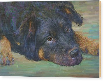 Will You Play With Me? Wood Print by Angela A Stanton
