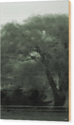 Willow Green Wood Print by Debra     Vatalaro
