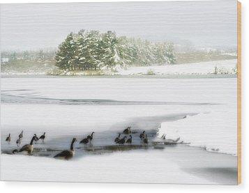 Willow Lake Geese Wood Print by Kathy Jennings