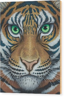 Wils Eyes Tiger Face Wood Print by Tish Wynne