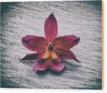 Wilting Orchid  Wood Print