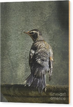 Wind At My Back Wood Print by Jan Piller