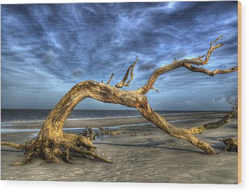 Wind Bent Driftwood Wood Print by Greg and Chrystal Mimbs