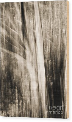 Wind Wood Print by Emilio Lovisa