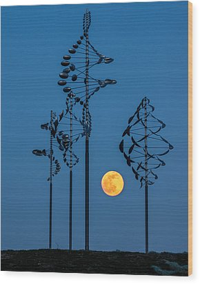 Wind Sculptures At Wilkeson Pointe Wood Print