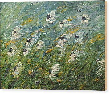 Wind Swept Daisies Wood Print by Robert Laper