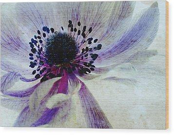 Windflower Wood Print by AugenWerk Susann Serfezi