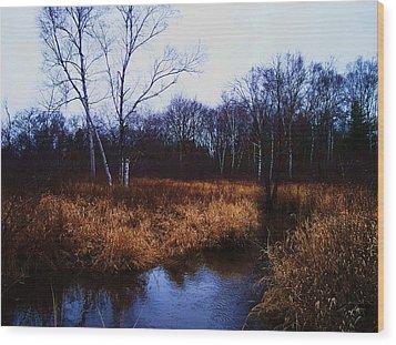Winding Creek 2 Wood Print by Anna Villarreal Garbis
