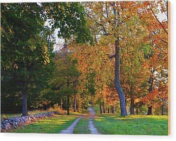 Winding Road In Autumn Wood Print