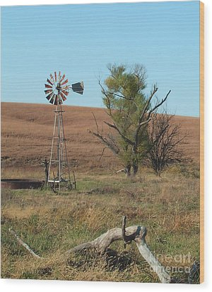 Windmill With Log Wood Print