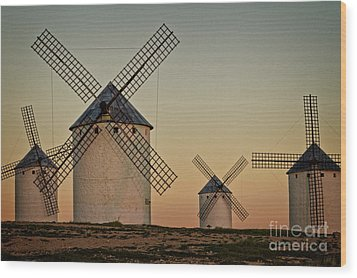 Wood Print featuring the photograph Windmills In Golden Light by Heiko Koehrer-Wagner