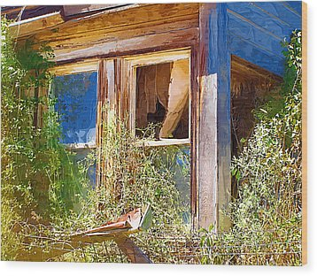 Wood Print featuring the photograph Window 2 by Susan Kinney